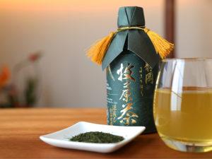 makinohara-the-vert